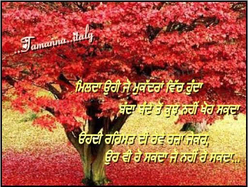 Desi comment Love Wallpaper : Desi comments Wallpaper in Punjabi images