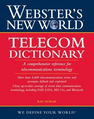 webster dictionary book